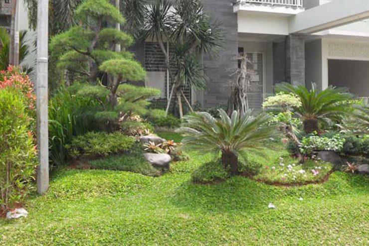 Jasa Pembuatan Taman di Serang Banten